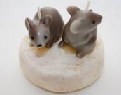 0450 Mäuse auf Camembert Käse